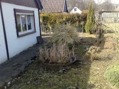Garten_AussenUmbau (14)