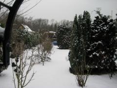 Garten_AussenUmbau (3)