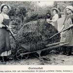 Gartenarbeit um 1900 Kompost