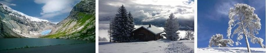 Landschaft, Winter, Dezember, Verschneit
