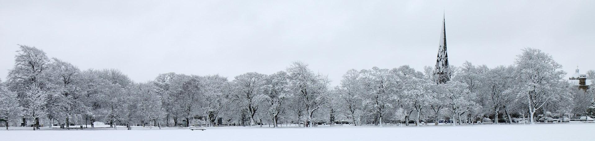Januar, Natur, Landschaft